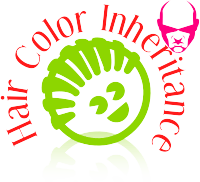 Hair Color Inheritance